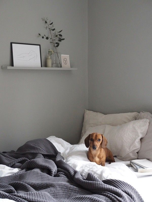 Sheerluxe Scandi Style Home Tour Sheerluxe Com With Images Grey Bedroom With Pop Of Color Bedroom Interior Simple Bedroom