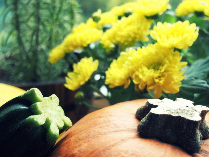 Jesień/dynia/żółty