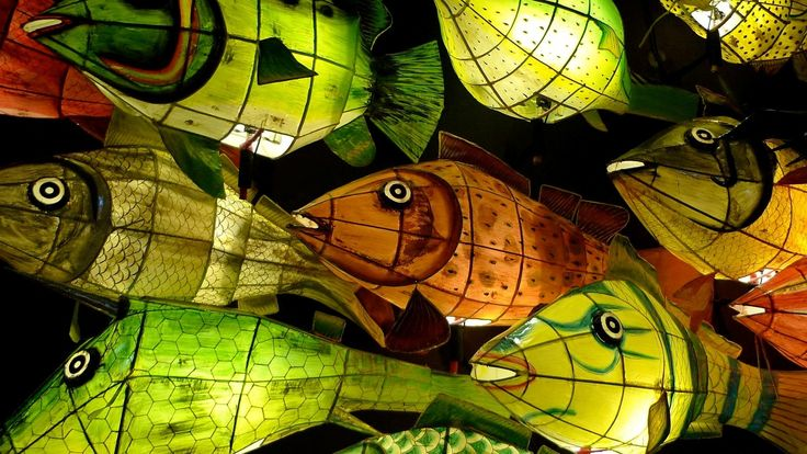 10 images about constructed lanterns on pinterest paper for Fish paper lanterns