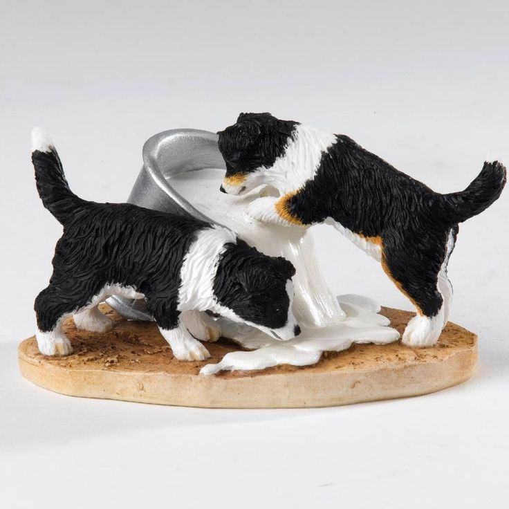 Border Fine Arts Border Collie Pup (Lapping it Up) - Friends 2 Hold On Webshop