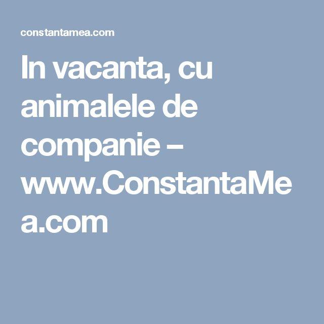 In vacanta, cu animalele de companie – www.ConstantaMea.com