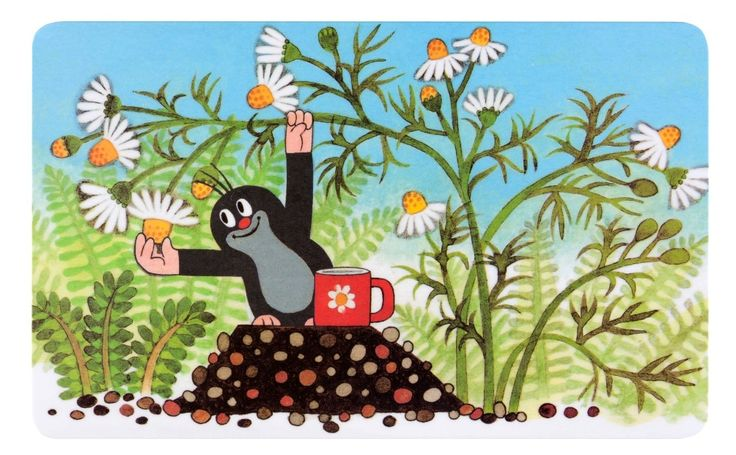 (2014-07) Muldvarpen plukker margueritter