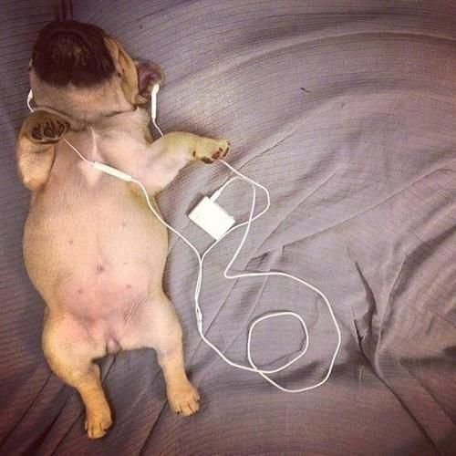 just chillin with some tunes....