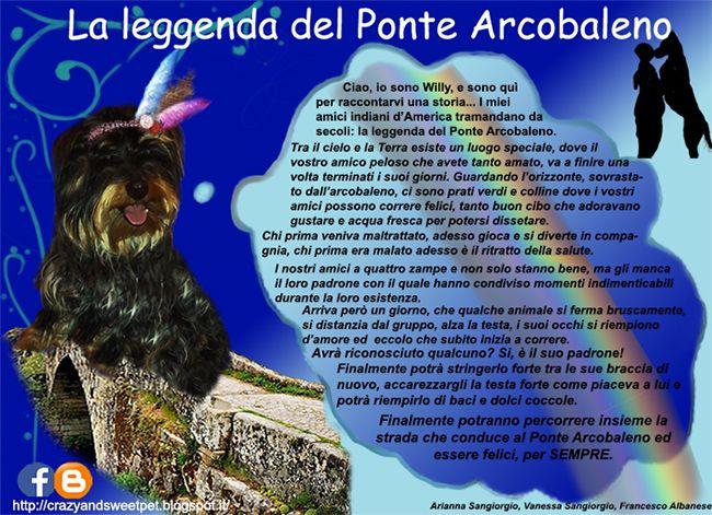 Crazy and Sweet Pets: La leggenda del Ponte Arcobaleno