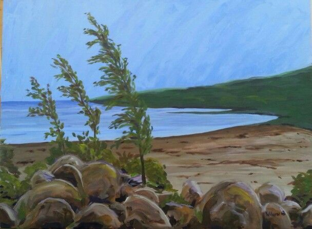 My latest Georgian Bay scene for a commission - 18x24 acrylic on canvas gallery frame.