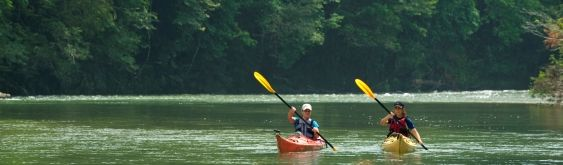 Barefoot panama canal jungle tour