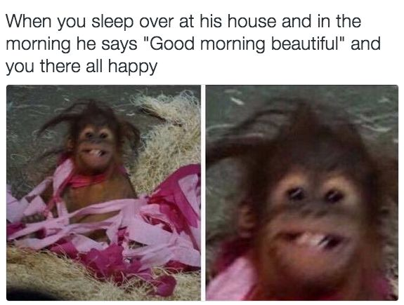 24 Memes You'll Enjoy If You're In A Healthy, Loving Relationship