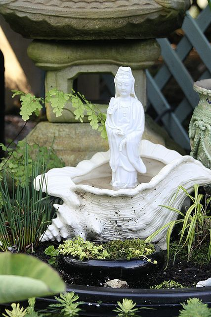 Kuan Yin in the garden--lovely resting in her shell.