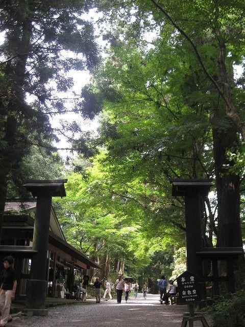 本堂に行くには急な斜面を登らねばならない。平泉の見所!