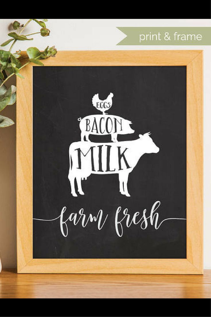 You Had Me At Bacon Vinyl Art Letters Farmhouse Kitchen Wall Decals Pork Quotes