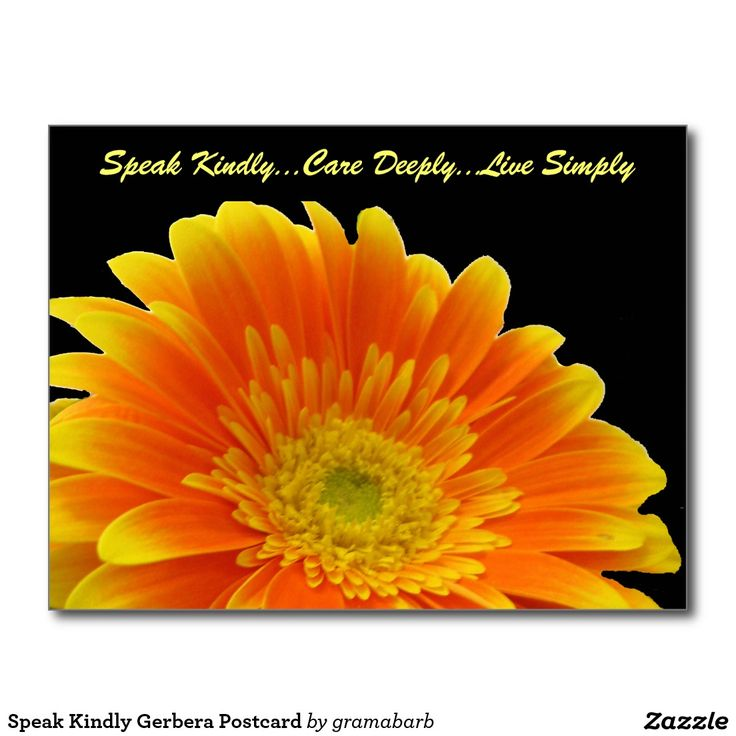 Speak Kindly Gerbera Postcard