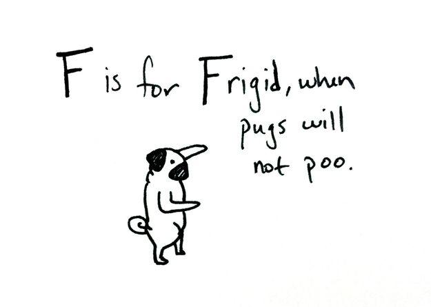I'm a sucker for a cute pug picture alphabet.