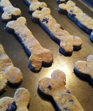 Grain-Free Blueberry and Banana Dog Cookies - K9 Instinct - Dog Nutritionist and Dog Trainer in Kitchener, Ontario, Canada. K9 Instinct Blog!