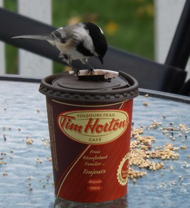 Tim Hortons | Every Cup Story - Everybody needs their Timmy's