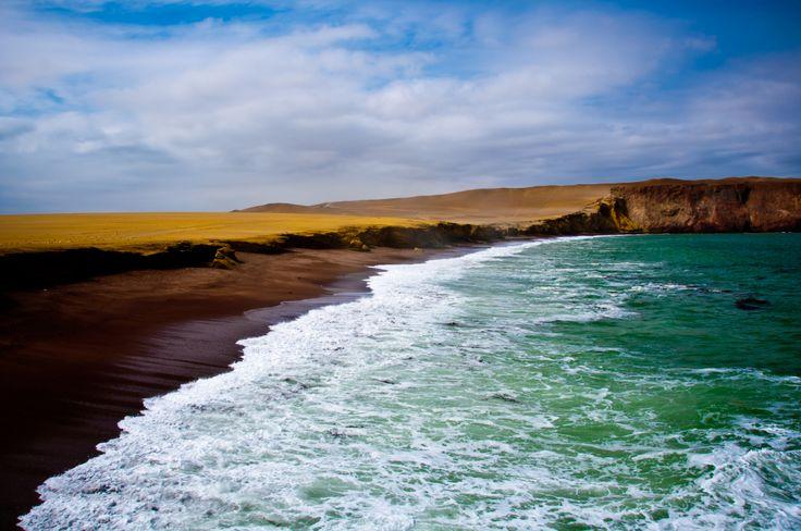 Paracas, #Peru. www.quynhle.com