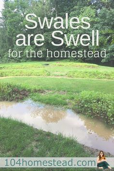 Swales Are Just Swell for the Homestead