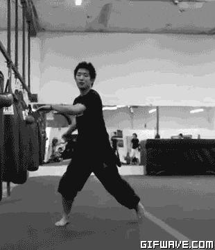 Kick Flip Martial Arts Tricking Sideswipe Steve Terada