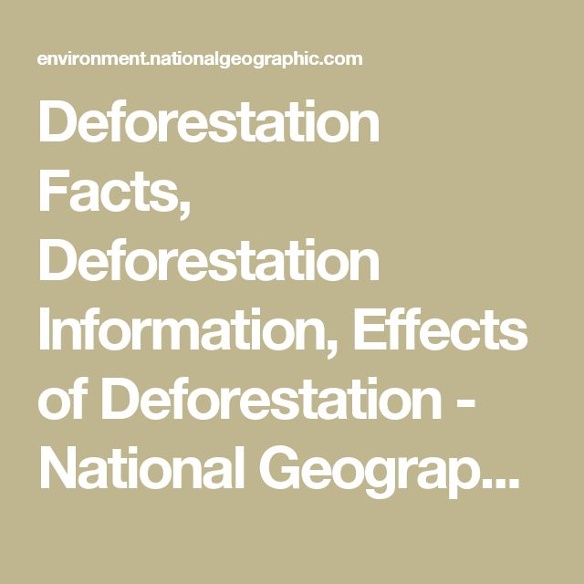 local and global effects of deforestation Drivers of deforestation and forest degradation: a synthesis report for redd+ policymakers [ 1 ] acknowledgements the authors wish to thank stephen cornelius, peter graham and eirik brun sørlie for their guidance.