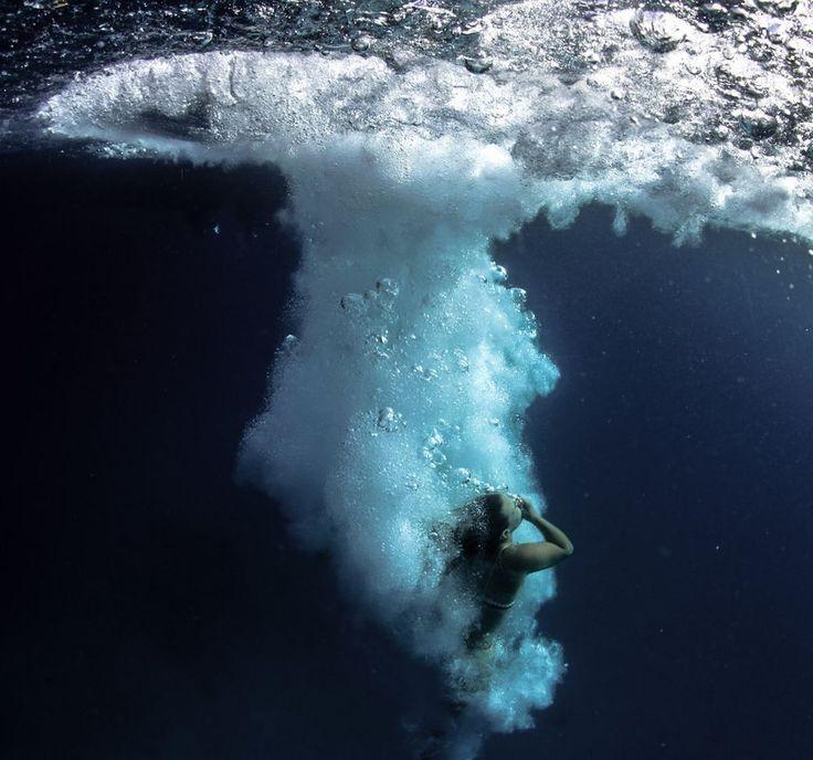 122 Best Underwater Scenes Images On Pinterest Animal