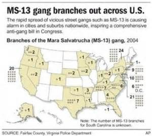 ms13 gang signs bing images 11th hour pinterest