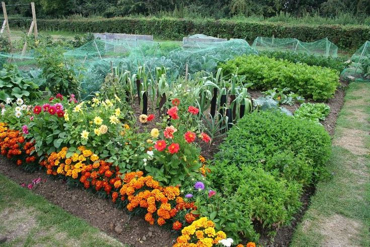 kitchen vegetable garden jardin potager bauerngarten beautiful edible landscapes and gardens pinterest vegetable gard - Flower And Vegetable Garden Ideas