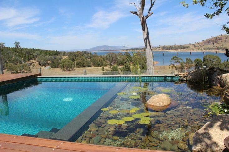 filtros piscina de plantas naturales