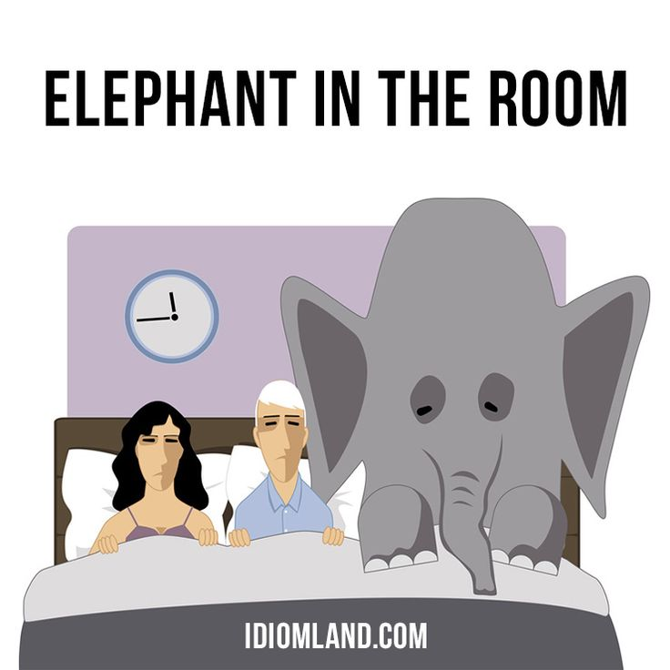 Meaning Of The Expression There An Elephant In Room Best Elephant 2017