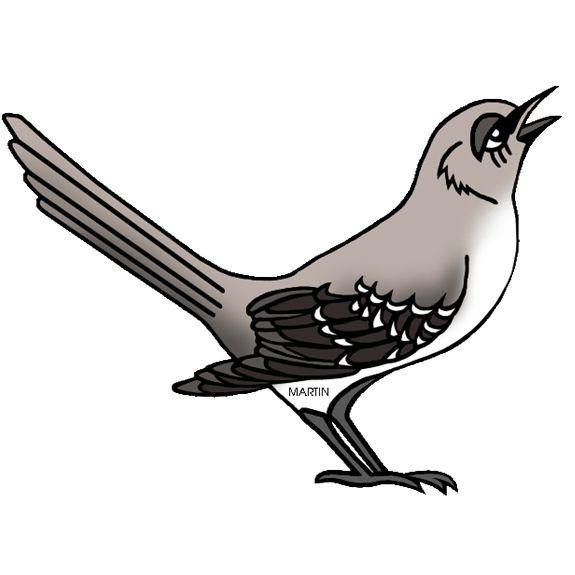 Ptáci - ŠKOLÁKOV