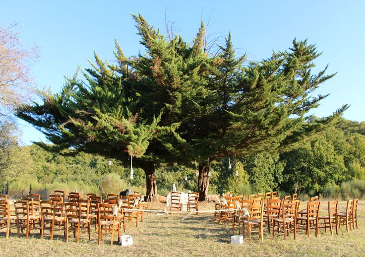 Matrimonio sotto un albero, vicino Roma. Wedding under a tree, near Rome.