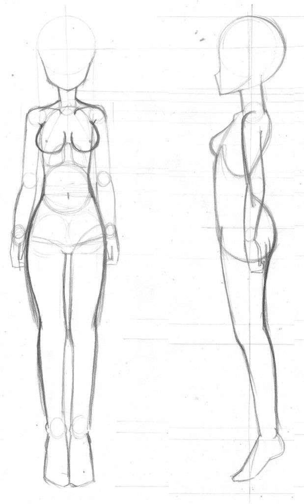 Drawing The Body Form