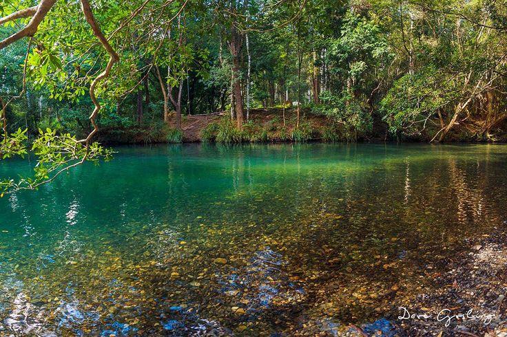Never Never Creek,The Promised Land, near Bellingen, NSW