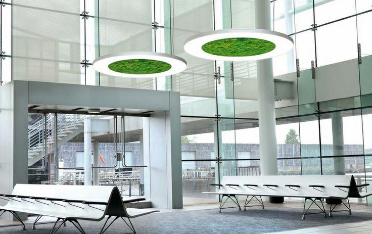 Sattler Round suspended LED light fixture (in moss) LUCE VERDE & 58 best ?ç Ayd?nlatma / Indoor lighting images on Pinterest   Indoor ...