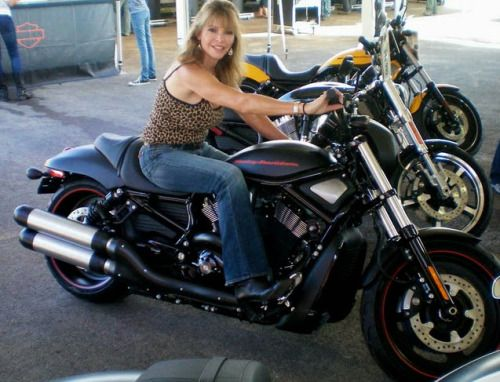 dating site for motorcycle riders Dating site for motorcycle riders biker dating site is the safest and easiest way for motorcycle riders to find local singles who love riding harley, triumph, ducati, yamaha, honda, bmw etc, so most biker women or men meet local bikers would like to visit online sites in hope of finding some like-minded friends or loverstop biker sites harleydatingsite biker useful biker dating tips for.