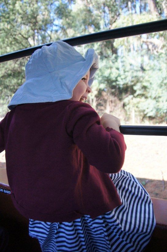 HOT: Day Out with Thomas at Puffing Billy, Puffing Billy Gembrook Station, Main Rd, Gembrook http://tothotornot.com/2015/07/hot-day-thomas-puffing-billy-puffing-billy-emerald-station-memorial-ave-emerald/