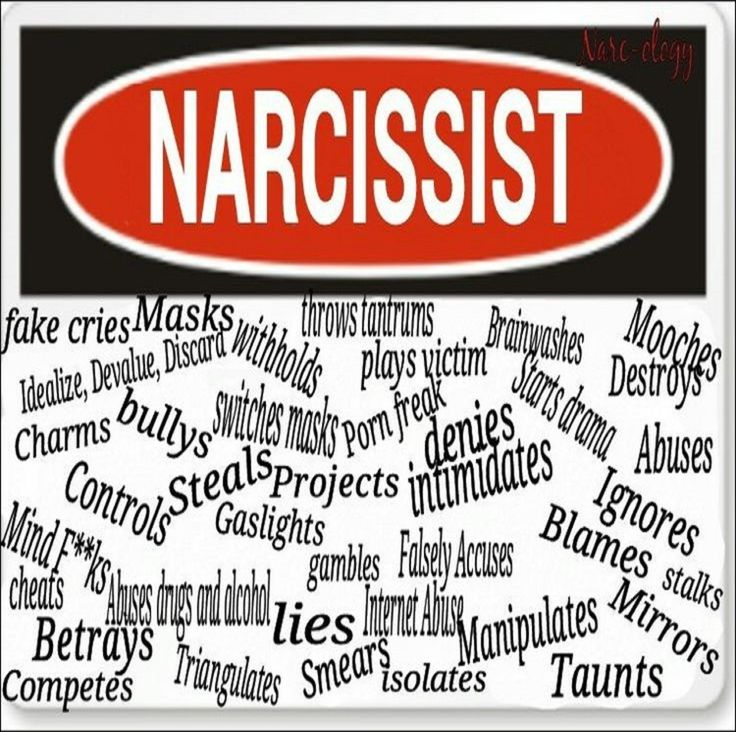 Traits Narcissist Pie Dating Of Pie As As A