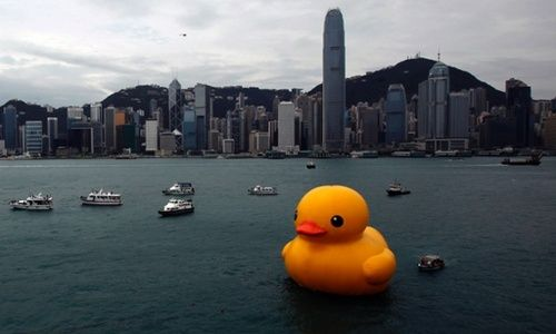 guardian:  Rubber Duck by Dutch conceptual artist Florentijn Hofman floats in Victoria Harbour, Hong Kong. The 16.5-metre-high inflatable sculpture will be shown at the Ocean terminal for a month. Photograph: Bobby Yip/ Reuters