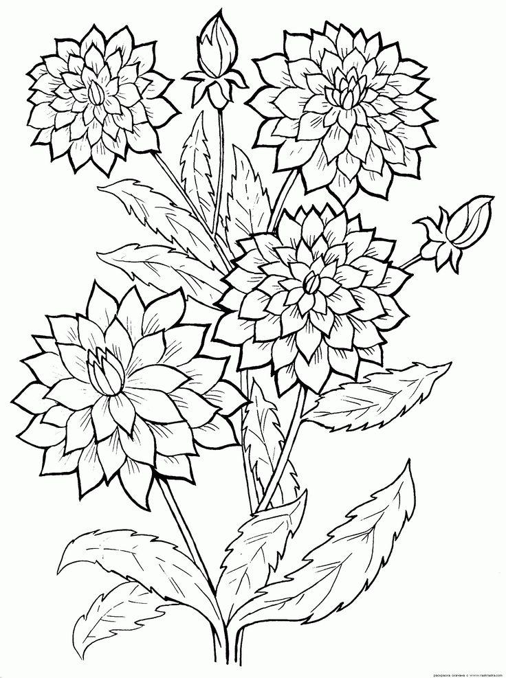 Best 25 coloriage fleur ideas only on pinterest fleur colorier coloriages paisley and - Fleur coloriage ...