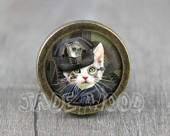 Steampunk Cat  Handmade Vintage Bronze Dresser knobs door jade4wood