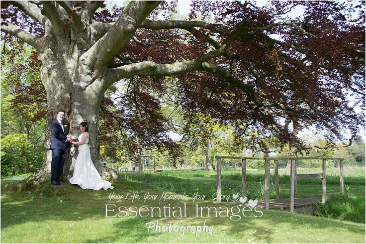 That gorgeous tree in the grounds of one of our favourite wedding venues #EastClose Hotel.....photography by http://www.newforestweddingphotographers.co.uk