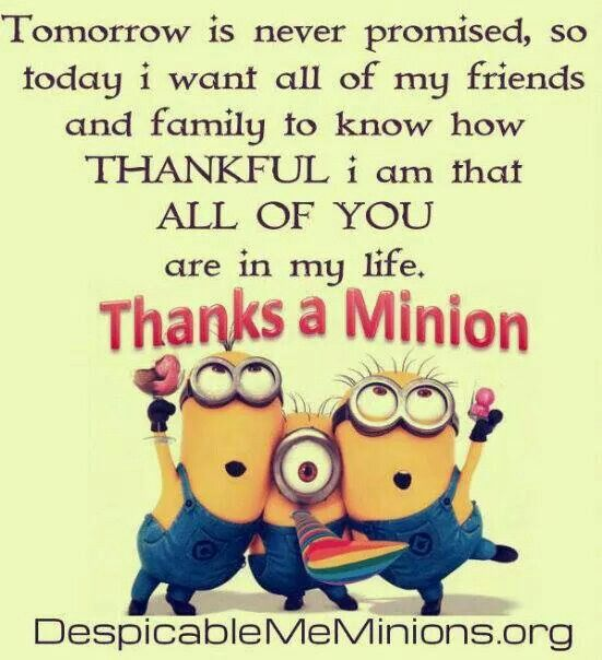 Thanks a Minion to all of my wonderful and caring friends! My friends are my unbiological family!!Love you all forever....you know who you are! Debby :) xxxx oooo ♥ ♥ ♥
