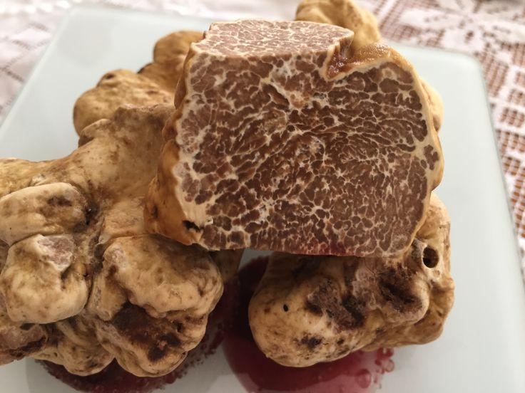 White truffles Alba