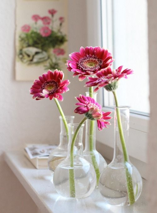 single blooms in bud vases all grouped together OR all by themselves .. charming