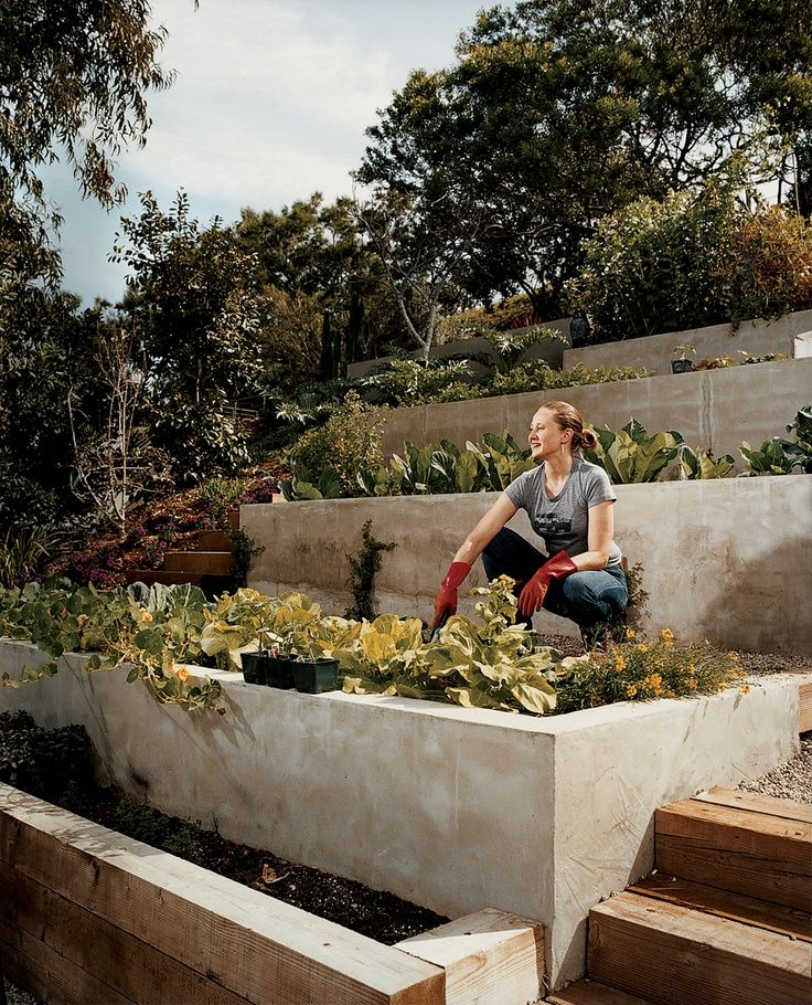 Modern terraced vegetable garden-  great use for a steep slope