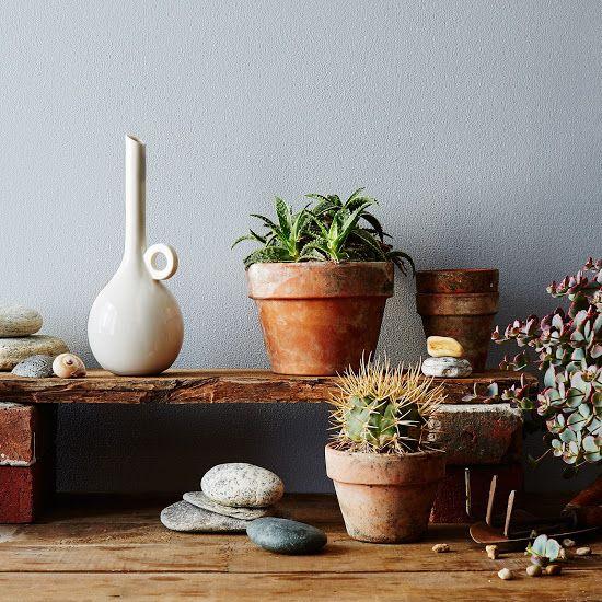 Ceramic Watering Vessel / food52