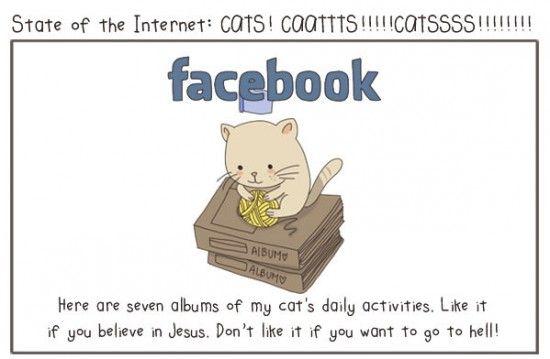 Le #SMO expliqué par des chats | facebook