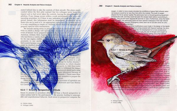 Pennsylvania artist and designer Paula Swisher draws birds on the pages of old engineering and science manuals.