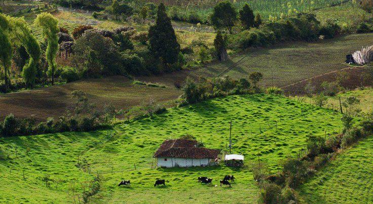 Sonson ; Antioquia, Colombia