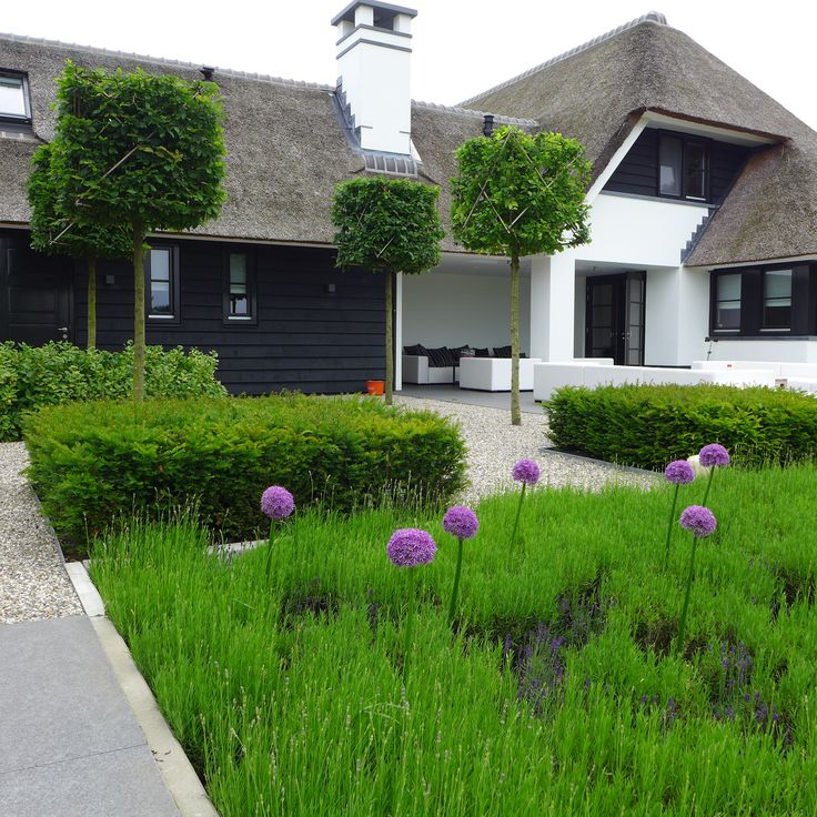 Moderne tuin Uienbollen www.hendrikshoveniers.nl