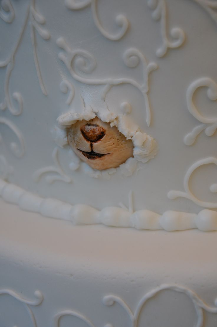 SO unique and cute! Nobody would expect to see this on your wedding cake.