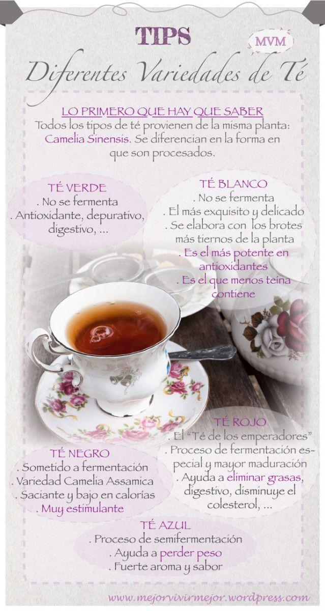 """El té es, después del agua, la bebida más consumida en el planeta. Aprende a distinguir las diferentes variedades de té que se obtienen de la planta """"Camelia Sinensis"""": verde, blanco, rojo, negro, …"""